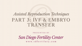 video-p3-ivf-embryo-transfer